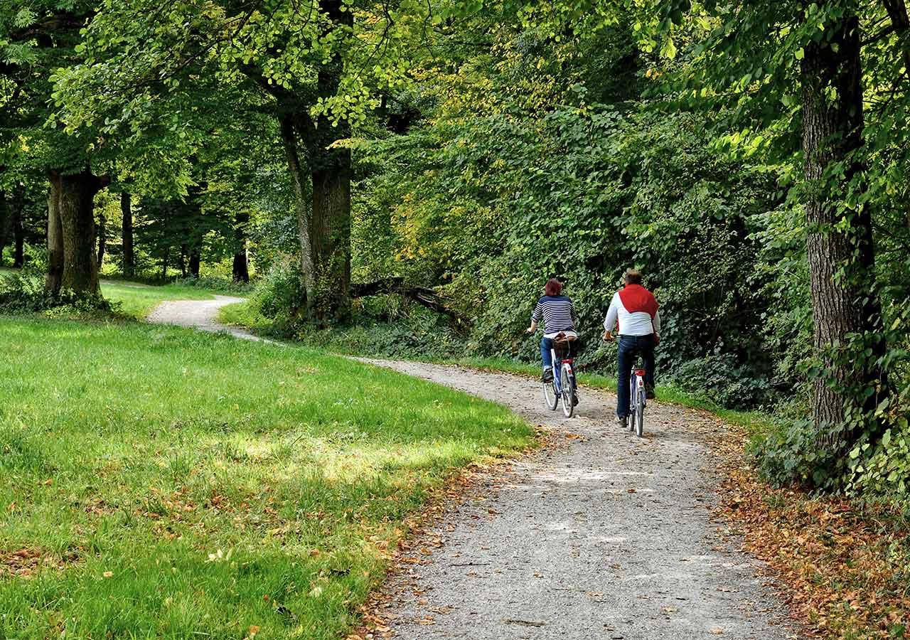 zum-alten-wirt-umgebung-fahrrad-wald