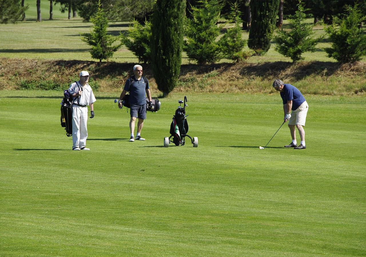 zum-alten-wirt-umgebung-golf
